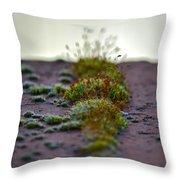 Martian Landscape Throw Pillow
