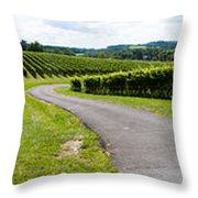 Maryland Vineyard Panorama Throw Pillow