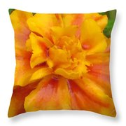 Mary's Gold Throw Pillow