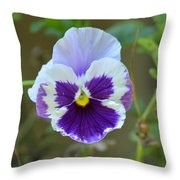Masked In Purple Throw Pillow