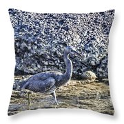 Matching Colors Throw Pillow