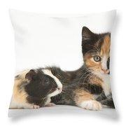 Matching Kitten & Guinea Pig Throw Pillow