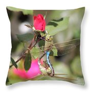 Mating Dragonfly Throw Pillow