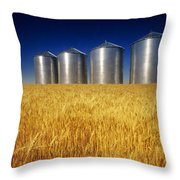 Mature Winter Wheat Field With Grain Throw Pillow by Dave Reede