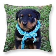 Maxx Throw Pillow