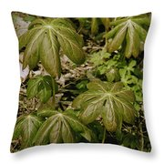 May Apples Throw Pillow