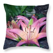 May Birth Flower Throw Pillow