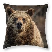 Maybe You Should Move Throw Pillow