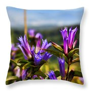 Meadow And Mountains Throw Pillow