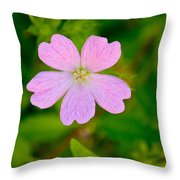 Meadow Checker Mallow Throw Pillow