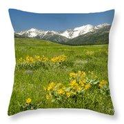 Meadow Landscape Throw Pillow
