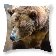 Meandering Along Throw Pillow