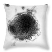 Measles And Simian Virus, Em Throw Pillow
