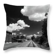 Medina 7325 Throw Pillow