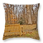Meditation At Valley Forge Throw Pillow