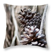 Dry Mediterranean Pinecone With Winter Colors Throw Pillow