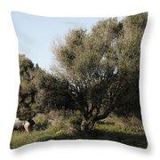 Mediterranean Wood Wiew Throw Pillow