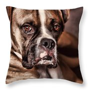 Meet Rocky Throw Pillow by Deborah Benoit