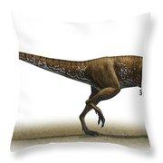 Megapnosaurus Kayentakatae Throw Pillow