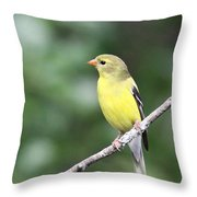 Mellow Lady Throw Pillow