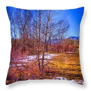 Melting Snow In South Platte Park Throw Pillow