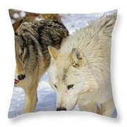 Members Of Wolf Pack Throw Pillow