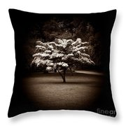 Memoir 1 Throw Pillow