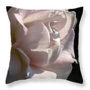 Memorial Rose Throw Pillow
