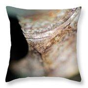 Merge Throw Pillow