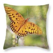 Merritt Butterfly Throw Pillow