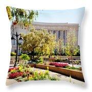 Mesa Spring Throw Pillow