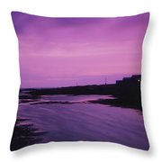 Mew Island, Belfast Lough, County Down Throw Pillow