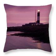 Mew Island, Belfast Lough, County Throw Pillow
