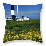 Mew Island, County Down, Ireland Throw Pillow