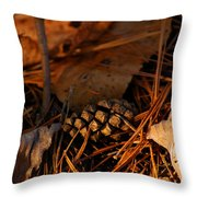 Michigan Golden Sunset Pine Cone Throw Pillow