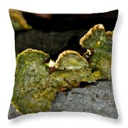Michigan Jade Fungus Throw Pillow