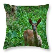 Michigan Whitetail 7344 Throw Pillow