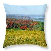 Michigan Winery Views Throw Pillow