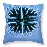 Micrasterias Throw Pillow by Eric V. Grave