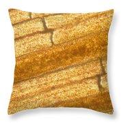 Micrograph Of A Goldfish Tail Throw Pillow