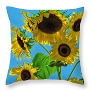 Mid Summer Dreams Throw Pillow