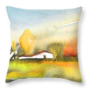 Midday 28 Throw Pillow