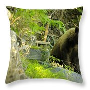 Midway - Backyard Bear Throw Pillow