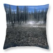 Midway Geyser Area Throw Pillow