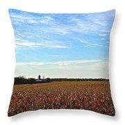 Midwest Farm Throw Pillow