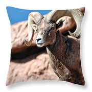 Mighty Big Horns You Have Throw Pillow