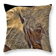Mighty Morphin' Power Elephant Throw Pillow