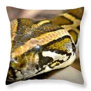 Mighty Python Throw Pillow