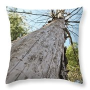 Mighty Tree And The Bark Beetle Throw Pillow