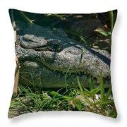 Mikey Awaits Throw Pillow